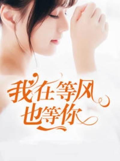 《我在等风也等你》小说章节列表在线阅读 于蓝盛又霆小说全文